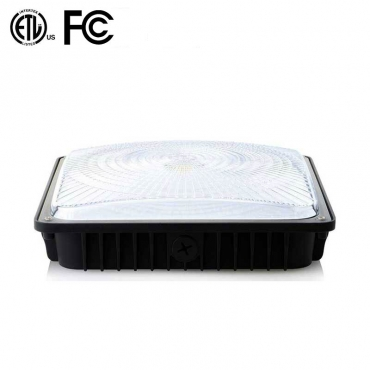 45W LED CANOPY LIGHT